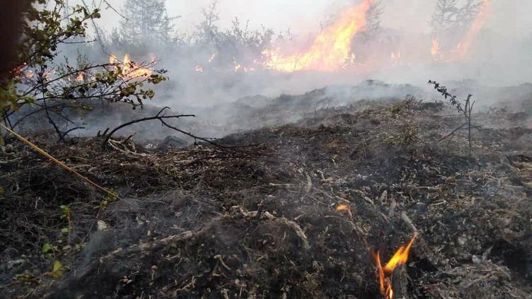 Un incendie dans le nord de la Sibérie (Russie), le 7 juillet 2020. (EMERCOM OF RUSSIA PRESS SERVICE / HANDOUT / MAXPPP)