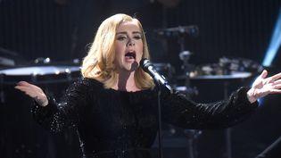 Adele en concert, ici en décembre 2015.  (HENNING KAISER / DPA)