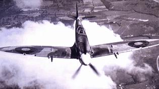 """L'exposition """"Guerre et sciences"""" de La Coupole est articulée autour de 10 pôles thématiques dont l'aviation   (Dr / La Coupole)"""