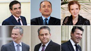 De gauche à droite, et de haut en bas : François Fillon, Jean-François Copé, Nathalie Kosciusko-Morizet, Bruno Le Maire, XavierBertrand et Christian Estrosi. (AFP / MONTAGE FTVI )