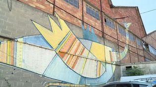 Le parcours street art de Bessèges dans le Gard donne des couleurs à une quinzaine de bâtiments industriels de la ville (France 3 Occitanie)