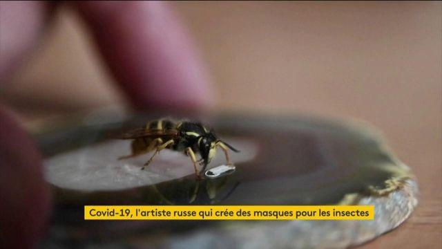 Coronavirus : un artiste crée des masques pour les insectes