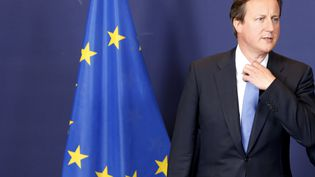 Le Premier ministre britannique, David Cameron, à Bruxelles, le 16 juillet 2014. (PASCAL ROSSIGNOL / REUTERS)