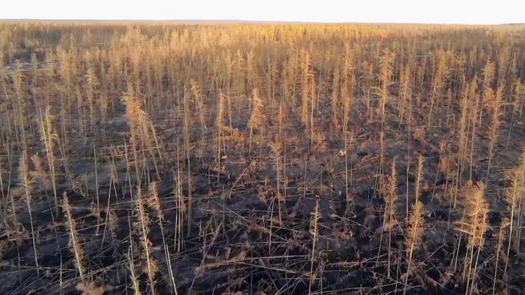En Sibérie, l'été a été dévastateur, avec des températures inédites et des incendies monstres. (CAPTURE ECRAN FRANCE 2)