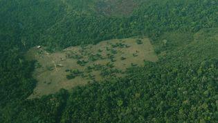 La déforestation en Amazonie. (CARL DE SOUZA / AFP)