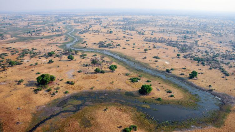 Le fleuveOkavango au Botswana. (LYU TIANRAN / MAXPPP)