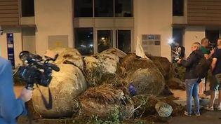 Les permanences de La République en marche à nouveau visées par des actions coup-de-poing de la part des agriculteurs. La dernière en date : jeudi 1er août à Toulouse (Haute-Garonne). (FRANCE 3)