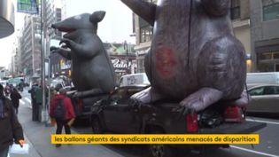 Des rats géants en plein coeur de New York. (FRANCEINFO)