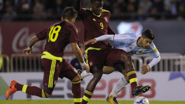 L'Argentine de Marcos Acuna accrochée par le Vénézuéla (ALEJANDRO PAGNI / AFP)