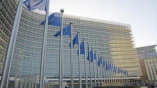 Le siège de la Commission européenne, à Bruxelles (Belgique), le 8 janvier 2016. (WINFRIED ROTHERMEL / PICTURE ALLIANCE / AFP)