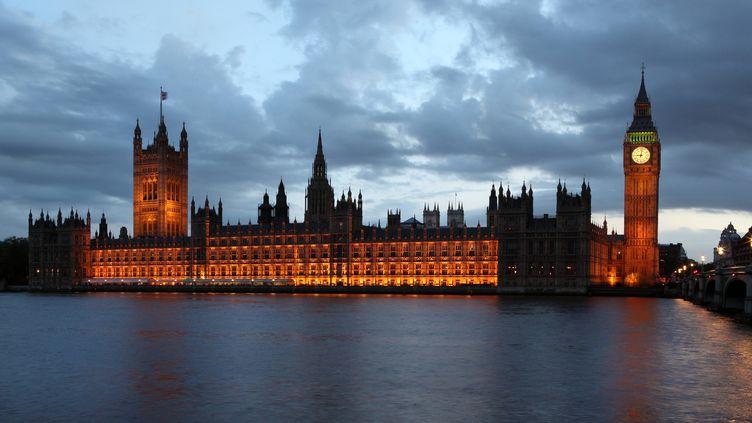 """Le palais de Westminster, à Londres, qui abrite la """"House of Parliament"""", le Parlement britannique. (MANUEL COHEN / THE ART ARCHIVE / AFP )"""
