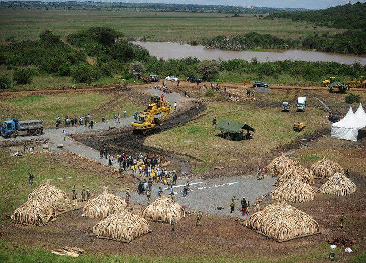Vue aérienne du site où s'achèvent les préparatifs de la crémation publique de 105 tonnes d'ivoire à Nairobi au Kenya. C'est la plus grande à être jamais réalisée. (Photo AFP/Tony Karumba)