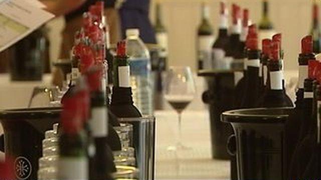 Le renouveau des vignes du Languedoc