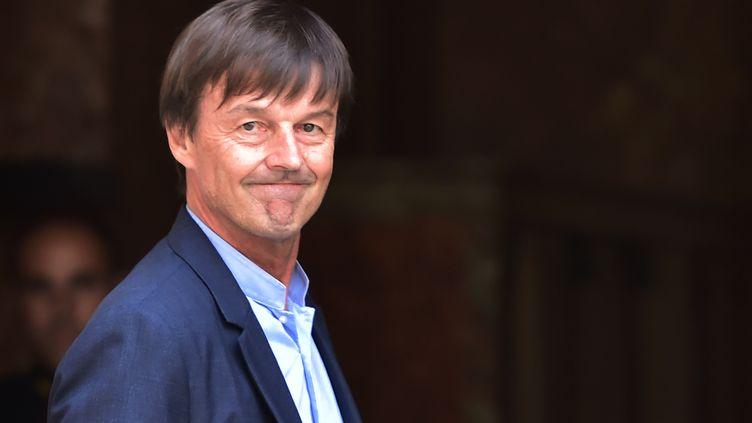 Nicolas Hulot, ministre de la Transition écologique et solidaire, à Paris le 1er juin 2017. (CHRISTOPHE ARCHAMBAULT / AFP)