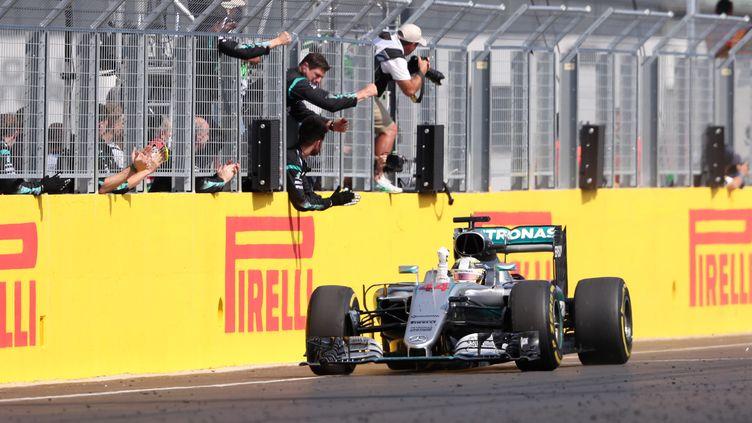 Lewis Hamilton (Mercedes) (FERENC ISZA / AFP)