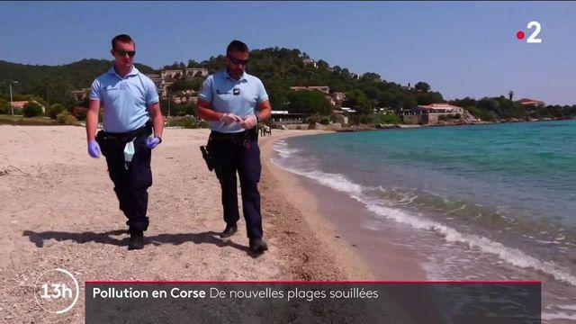 Pollution en Corse : de nouvelles plages fermées près de Porto-Vecchio