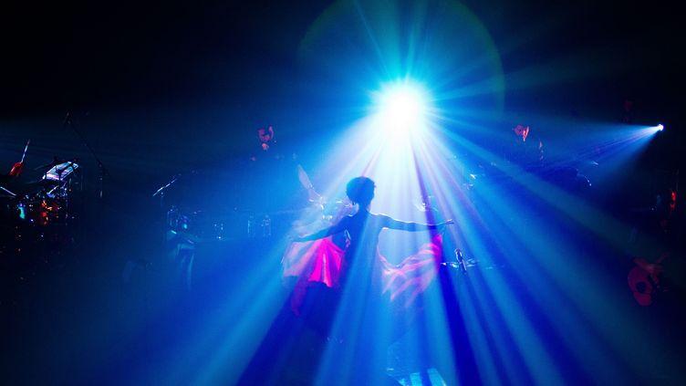 Un concert de 2010 au Bataclan.  (Citizenside.com / AFP)