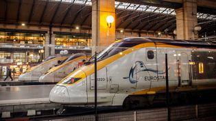 Un train Eurostar à la gare du Nord, à Paris, le 17 janvier 2014. (MAXPPP)