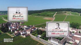 Les vignes de Bourgogne, terrain de jeu des milliardaires du monde entier (ENVOYÉ SPÉCIAL  / FRANCE 2)