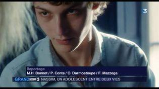 Une image dufilm De toutes mes forces de Chad Chenouga (France 3)