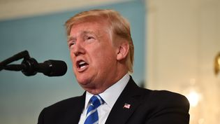 Le président américain Donald Trump lors d'une allocution à la Maison Blanche, à Washington (Etats-Unis), le 15 novembre 2017. (NICHOLAS KAMM / AFP)