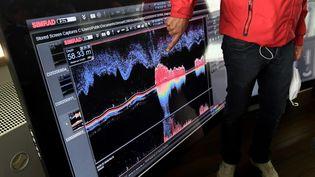 Les signaux acoustiques sous-marins, une mine d'or pour améliorer nos moyens de communication. (FRED TANNEAU / AFP)