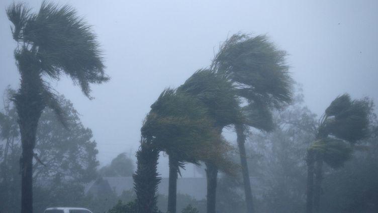 Laville de Panama City soufflée par l'ouragan Michael en Floride, le 10 octobre 2018. (JONATHAN BACHMAN / REUTERS)