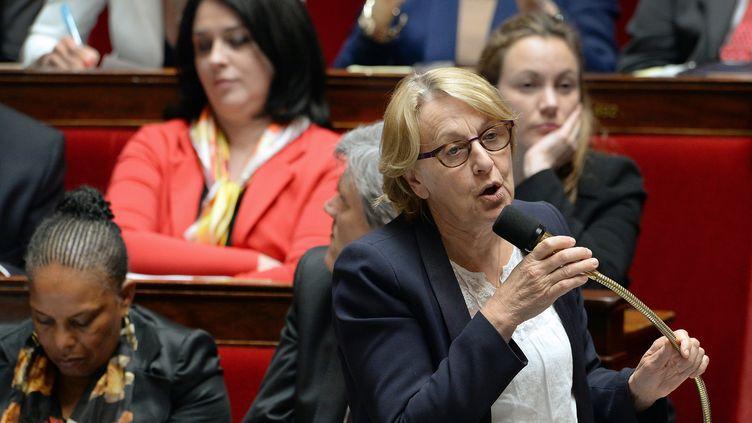 La ministre de la Fonction publique, Marylise Lebranchu, dans l'hémicycle de l'Assemblée nationale à Paris, le 14 mai 2014. (PIERRE ANDRIEU / AFP)