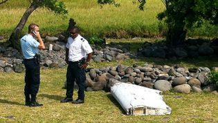 (Le débris découvert à La Réunion © AFP   Yannick Pitou)