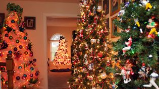 La maison aux sapins, à Culloden, West Virginia (USA), en décembre 2011...  (Kenny Kemp / NBC / AP / Sipz)