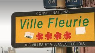 """Cahier des charges trop contraignant, critères mal compris, certaines communes refusent de participer au concours """"Villes et Villages Fleuris"""" (FRANCE 2)"""