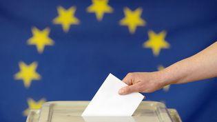 Les élections européennes auront lieu le 26 mars 2019 en France. (PETER ENDIG / DPA-ZENTRALBILD / AFP)