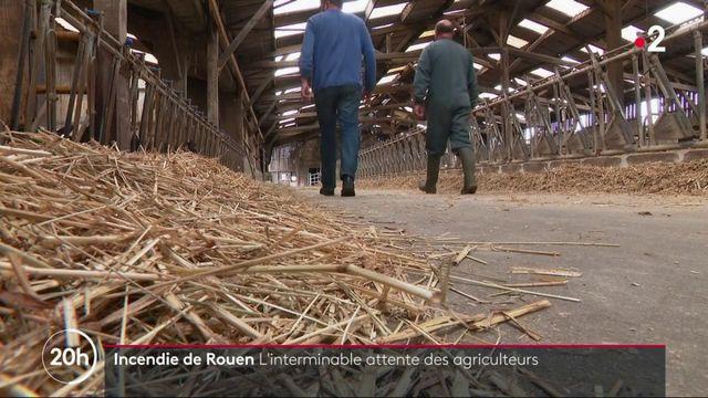 Incendie de Rouen : l'interminable attente des agriculteurs