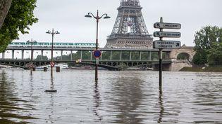 La Seine, à Paris, le 2 juin 2016. (IRINA KALASHNIKOVA / SPUTNIK / AFP)