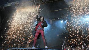 Le légendaire Alice Cooper sur la scène d'Art Rock en 2014, à Saint-Brieuc. (FRANCOIS DESTOC / MAXPPP)