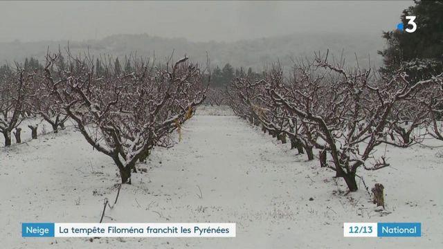 Intempéries : la tempête Filoména est en train de toucher les Pyrénées-Orientales