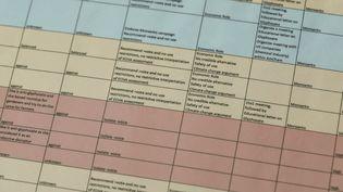"""Un fichier appelé """"Glyphosate target"""" liste 74 cibles prioritaires, divisées en quatre groupes en fonction de leur soutien à Monsanto (capture d'écran). (L'OEIL DU 20 HEURES / FRANCE 2)"""