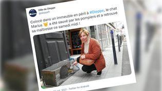 Un tweet de la ville de Dieppe montrant Martine en compagnie de son chat Marius. (COPIE D'ECRAN TWITTER)