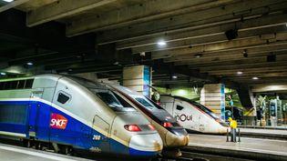 Des trains à quai, à la gare Montparnasse, à Paris, le 28 décembre 2019. (MATHIEU MENARD / HANS LUCAS)