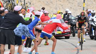 Wout van Aert (Jumbo Visma) a remporté la 11e étape du Tour de France 2021 après un numéro en solitaire dans le Mont Ventoux. (DAVID STOCKMAN / BELGA MAG / AFP)