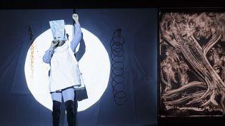 Un Riquet à la fois simple et poétique, porté par de nombreux effets visuels  (Christophe Raynaud de Lage / Festival d'Avignon)