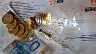 Une hausse rétroactive de 1,50 euro par mois est prévue pour les 28 millions de clients soumis aux tarifs réglementés de l'électricité. (DENIS CHARLET / AFP)