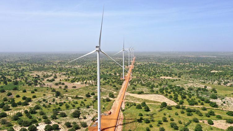 Des éoliennes de la centrale de Taïba Ndiaye (ouest du Sénégal), présentée comme la plus importante du genre en Afrique de l'Ouest. Photo prise le 23 octobre 2019. (ADRIEN BARBIER / AFP)