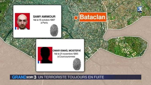 cinq kamikazes identifiés