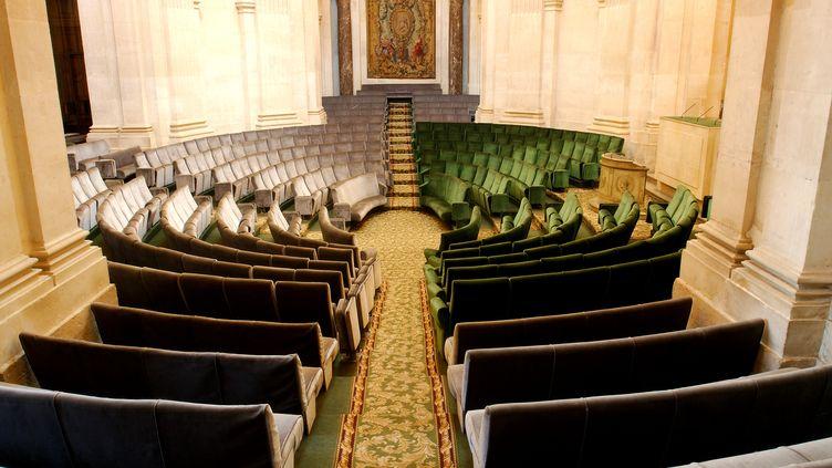 Les fauteuils verts de l'hémicyclede l'Académie française. (ANTOINE LORGNIER / ONLY FRANCE / AFP)