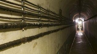 Les secrets de la ligne Maginot  (AFP /Grégory GERAULT)