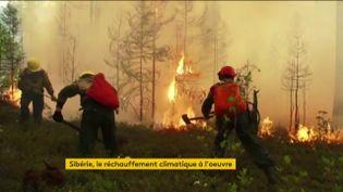 Les forêts en feu en Sibérie (FRANCEINFO)