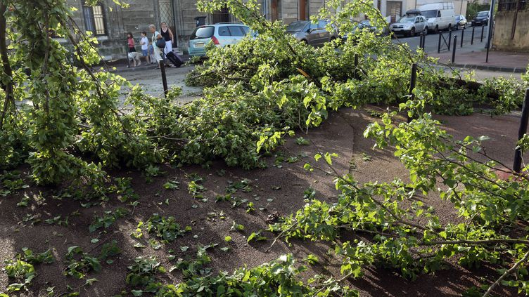 Des arbres sont tombés sur la route à Bordeaux (Gironde), le 27 juillet 2013. (NICOLAS TUCAT / AFP)