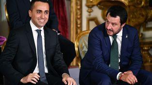 Les vice-Premiers ministres italiens Luigi Di Maio et Matteo Salvini à Rome, le 1er juin 2018. (ALBERTO PIZZOLI / AFP)