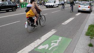 Une voiture stationne sur une piste cyclable à Paris, en 2013. (JPDN/SIPA)